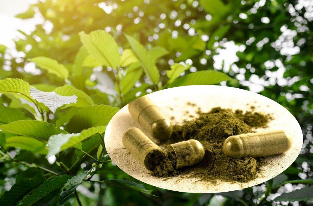 Green Sumatra Kratom Review