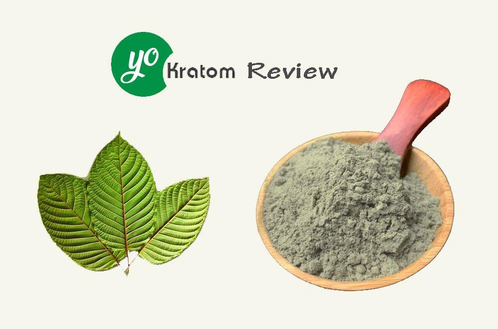 Yokratom Review