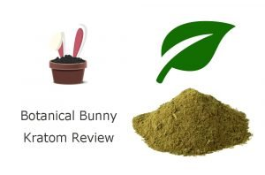 Botanical Bunny Review